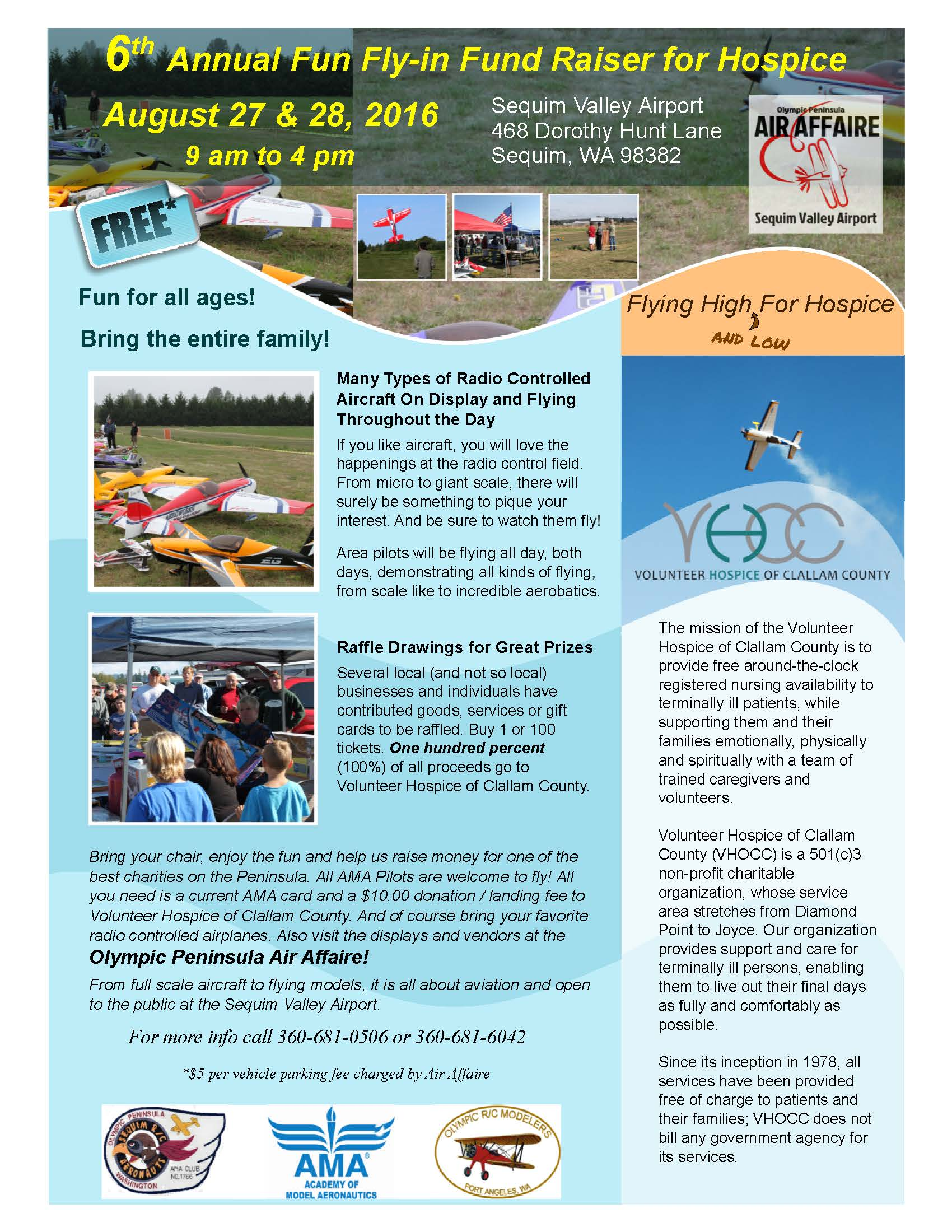 RC flyin flyer 2016